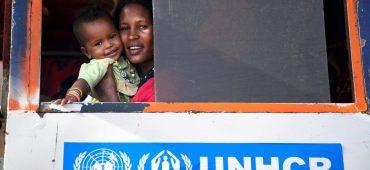 I 10 migliori articoli su rifugiati e immigrazione 24/2017
