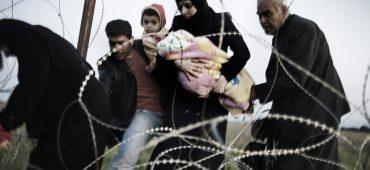 I 10 migliori articoli su rifugiati e immigrazione 11/2017