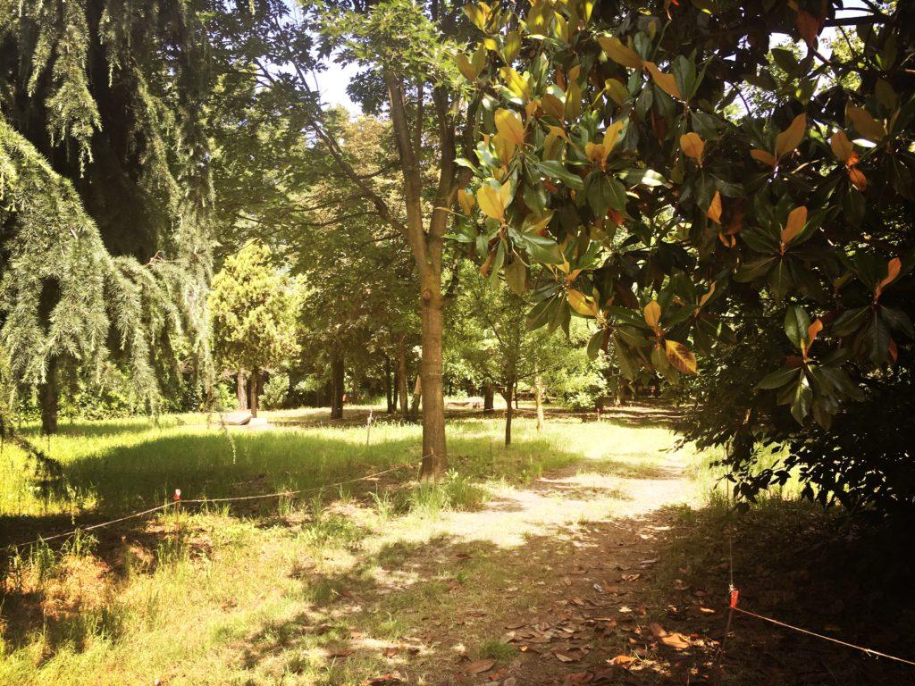 Uno scorcio del giardino di Casa Chiaravalle (foto: Marina Petrillo)