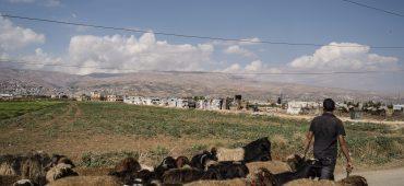 Siriani in Libano: tra deportazioni e ritorni (in)volontari