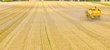 La nuova Politica Agricola Comune europea ha una dimensione sociale